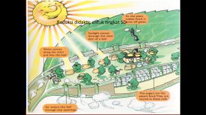 analogi fotosintesis untuk siswa SD